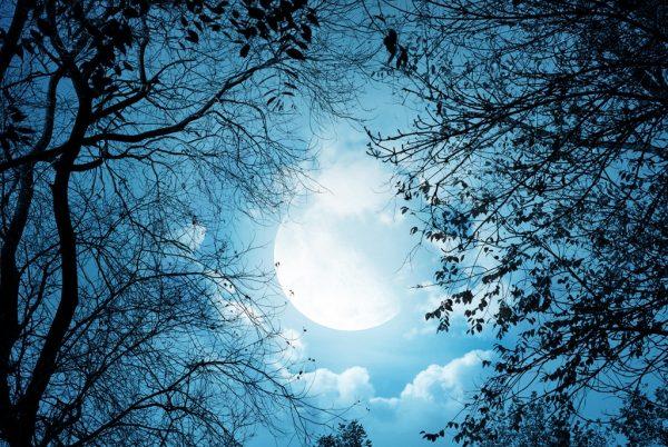 white-autumn-night-ipad-iphone