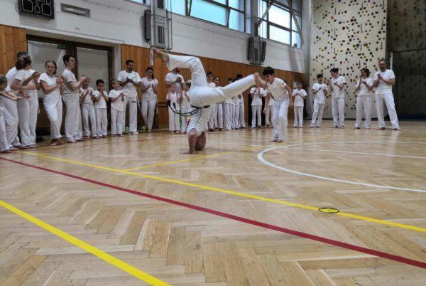 <a href=https://www.salesko.cz/paskovani-v-krouzku-capoeira/ title='Páskování v kroužku capoeira'>Páskování v kroužku capoeira</a>